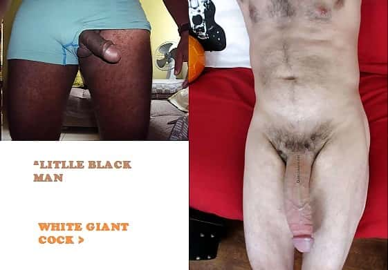 White Cock Wins 11 – Little Black Cock Vs Giant White Cock